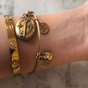 Alex & Ani Key to Life bracelet